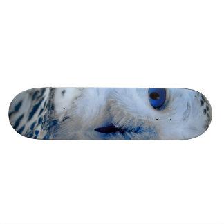Blue Eyed Snow Owl Skate Board Deck