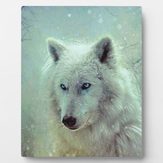 Blue Eyed Wolf Painting Artwork Plaque