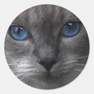 Blue eyes classic round sticker