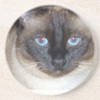 Blue Eyes Coasters