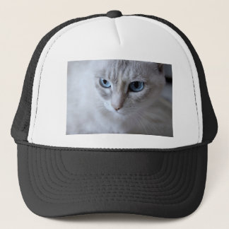 Blue Eyes Kisa Cat Trucker Hat