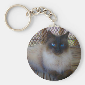 Blue Eyes Kitty Collection Basic Round Button Key Ring