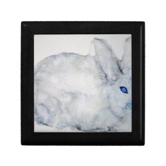 blue eyes rabbit gift box