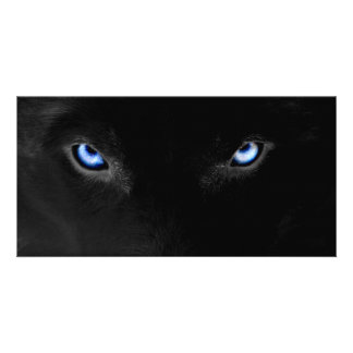 Blue Eyes - wolf - Husky Photo Card Template