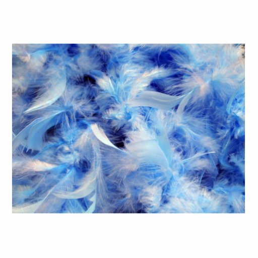 Blue Feathers Photo Cut Out