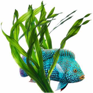 Blue Fish in Seaweed Pin Photo Sculpture Badge