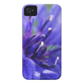Blue Flower 2 mf iPhone 4 Case-Mate Cases