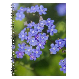 Blue Flowers Blossoms Destiny Peace Love Park Vine Spiral Notebooks
