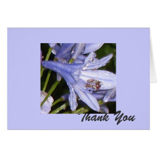 Blue Flowers in the morning 1, Thank You Card