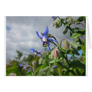 Blue Flowers Vines Peace Love Destiny Garden Party Greeting Card