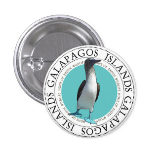 Blue Footed Booby 3 Cm Round Badge