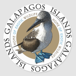 Blue Footed Booby stickers