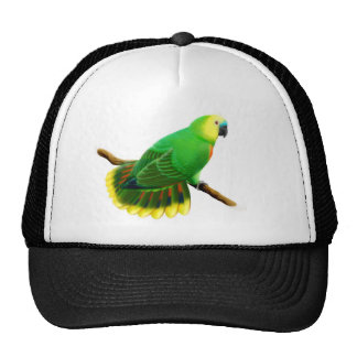 Blue Fronted Amazon Parrot Hat