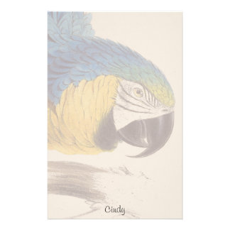 Blue Gold Macaw Parrot Bird Wildlife Stationery