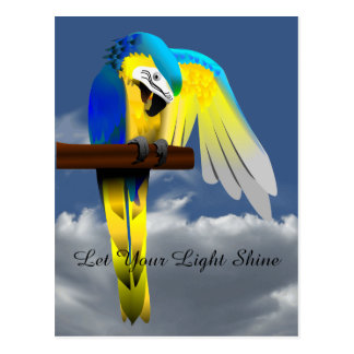 Blue Gold Macaw Parrot Inspirational Quote Postcard