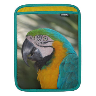 Blue & Gold Macaw Parrot iPad Sleeve