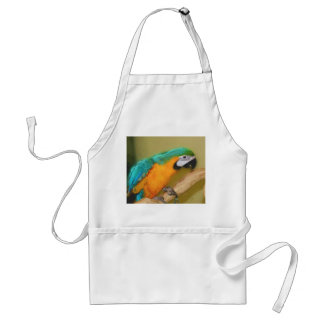 Blue Gold Macaw Parrot Painting Apron