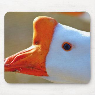 Blue Goose Eye Mouse Pad