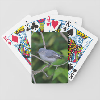Blue-gray Gnatcatcher Bicycle Playing Cards