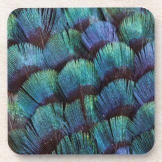 Blue-green pheasant feather design coaster