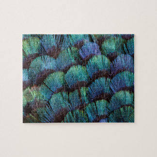 Blue-green pheasant feather design jigsaw puzzle