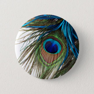 Blue Green Purple Exotic Peacock Feather 6 Cm Round Badge