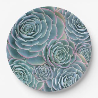 Blue Green Succulents Big Flowers 9 Inch Paper Plate