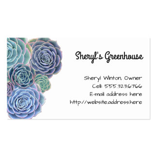 Blue Green Succulents Custom Template Pack Of Standard Business Cards