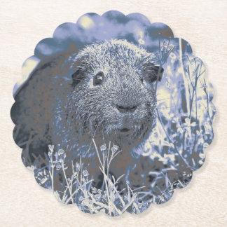 blue guinea pig paper coaster