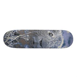 blue guinea pig skateboard