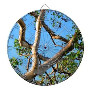 BLUE GUM TREE QUEENSLAND AUSTRALIA DARTBOARD