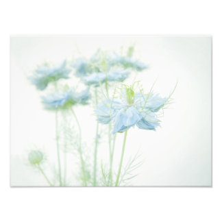 Blue Haze Large Photo Print