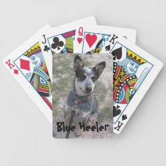 Blue Heeler playing card deck
