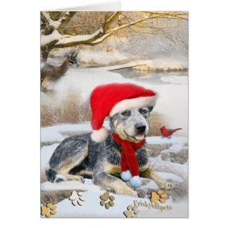 Blue Heeler winter Scene cards