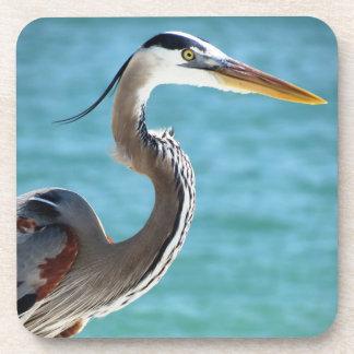 Blue Heron in Florida Coaster
