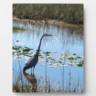 Blue Heron in the Glades Display Plaques