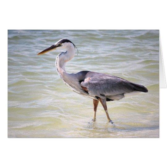 Blue Heron on Lovers Key Card