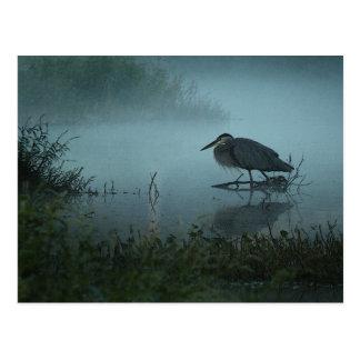 Blue Heron Postcard