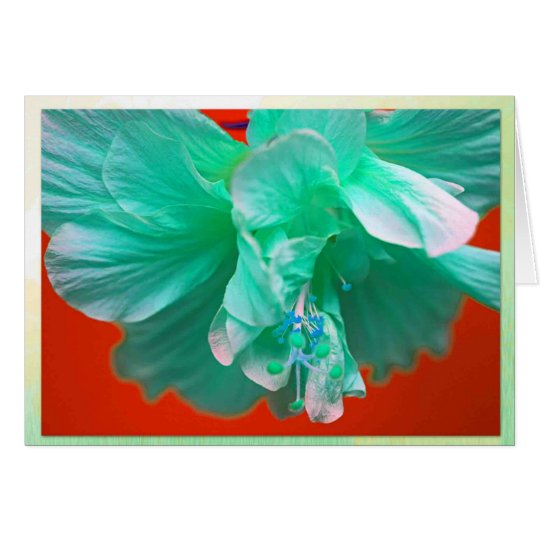 Blue hibiscus card