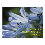 Blue Hosta Trumpets Postcards