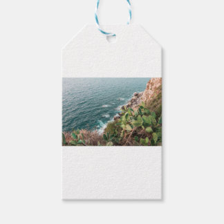 Blue hour gift tags