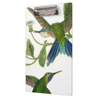 Blue Hummingbird Birds Wildlife Flowers Clipboard