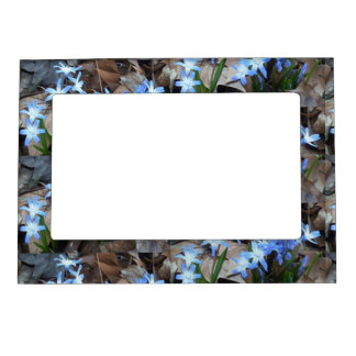 Blue Hyacinth Flowers Magnetic Picture Frame
