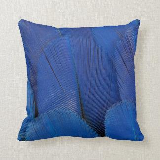 Blue Hyacinth Macaw Feather Design Cushion