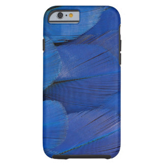 Blue Hyacinth Macaw Feather Design Tough iPhone 6 Case
