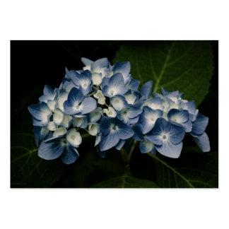 Blue Hydrangea 8514 Mini Print Business Cards
