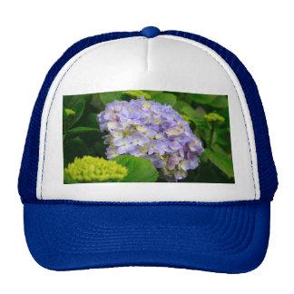 Blue Hydrangea Cap