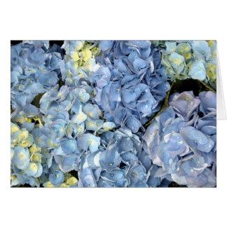Blue Hydrangea Flower Card