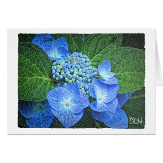 Blue Hydrangea Flower/Floral /Watercolor Look Card