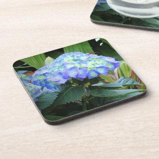 Blue Hydrangea Flowers Photo Coaster